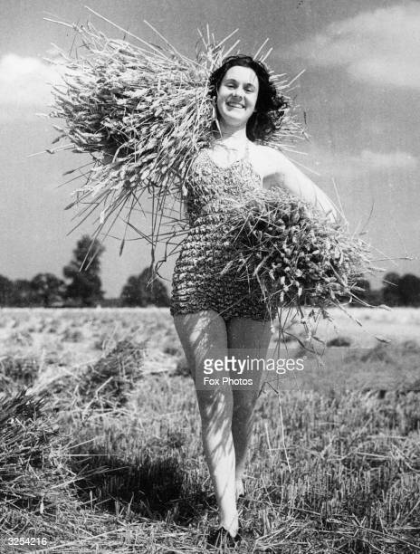 Bather, from the nearby Water Splash swimming pool, helps gather the sheaves in a wheat field near St Albans. Many of the bathers help out during the...
