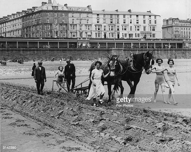 Bathers on the beach at Bridlington helping with the ploughing of the sands which helps to build up the beach against gales.