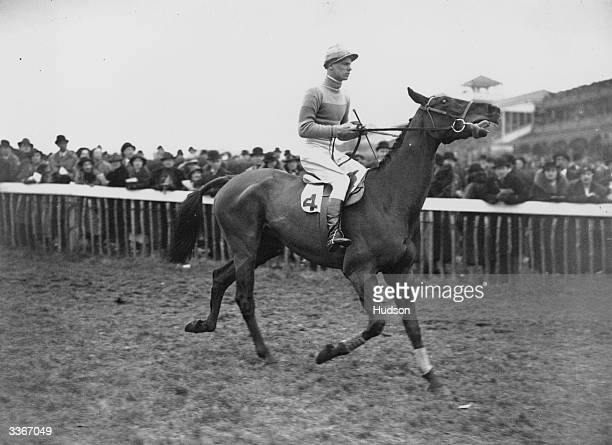 Racehorse Golden Miller with his new jockey Evan Williams, who rode him to a record fifth consecutive victory in the 1936 Cheltenham Gold Cup