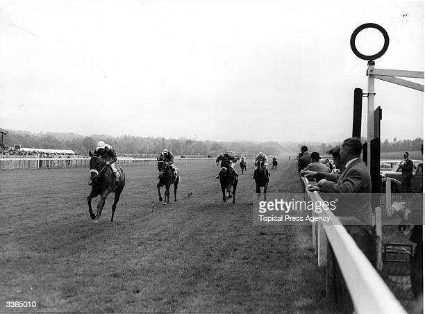 True Cavalier ridden by R Fawdon wins the Derby trial stakes from National Anthem ridden by A Breasley and Solarium ridden by W Snaith at Lingfield...
