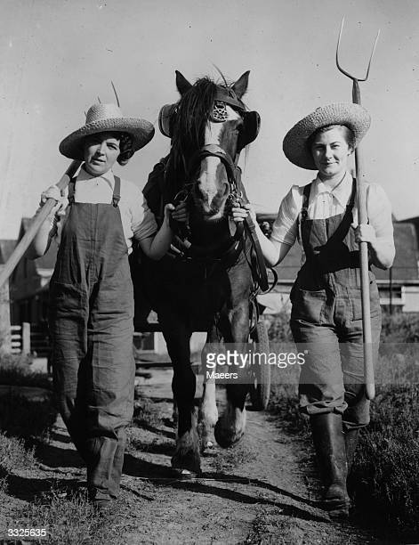Two Land Army girls carrying pitchforks and sporting straw hats to go with their dungarees Their carthorse however has no hat