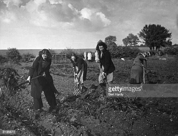 Members of the Women's Land Army raking hay in a ploughed field in Wolverhampton during World War II Original Publication Picture Post 786...