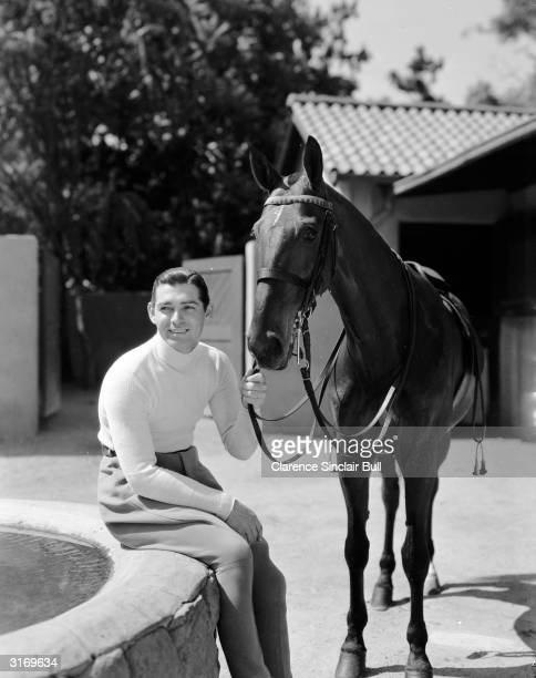 American leading man Clark Gable holding a horse by the bridle