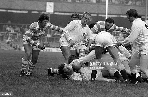 England play against Argentina at Twickenham in a Rugby Union International game England prop Fran Cotton holds the ball while England hooker Peter...