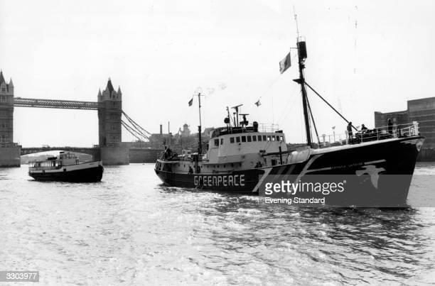 The Greenpeace ship sails down the River Thames London past Tower Bridge