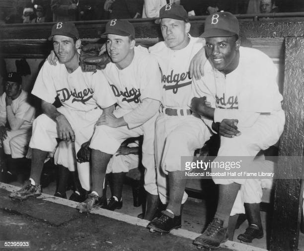 Brooklyn Dodgers infielder and slugger Jackie Robinson poses with teammates Johnny 'Spider' Jorgensen Harold 'Pee Wee' Reese and Eddie Stanky on the...