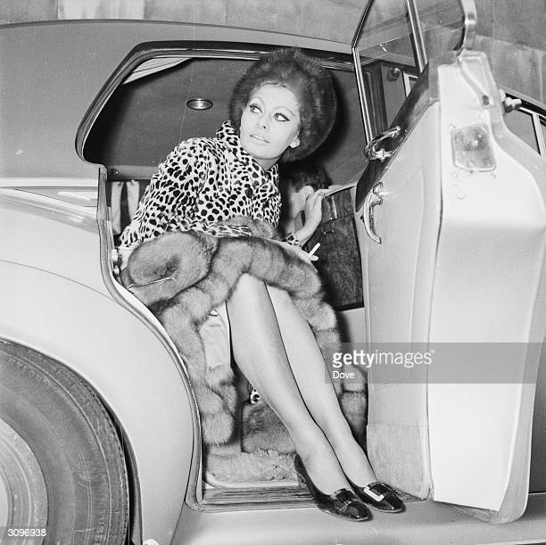 Italian actress Sophia Loren gets into a car at London Airport