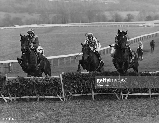 At the third fence from home in the Champion Hurdle Challenge Cup Cheltenham the evential winner P Kellaway on Bula is on the left The second horse...