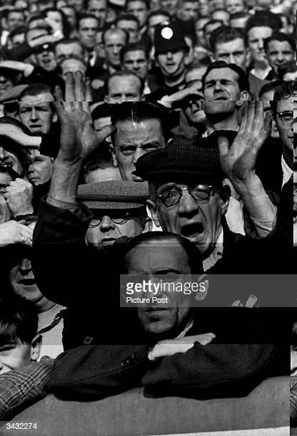 Fan at Ibrox stadium in Glasgow gestures in frustration while watching a football match between Celtic and Glasgow Rangers. Large crowds always...