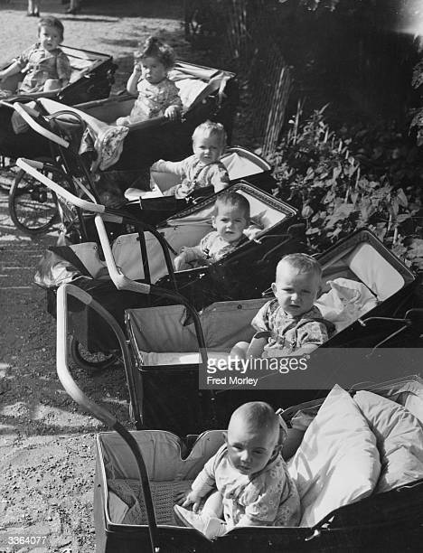 Babies sit in line in their prams at the Muriel Green Nursery Centre, St Albans, where they are looked after whilst their mothers are working for the...