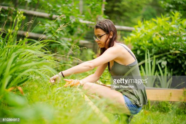 15-years-old teenager girl gardening at the backyard, cutting the weeds at the flower bed - 14 15 years stock pictures, royalty-free photos & images