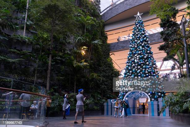 A 16metre tall Christmas tree stand on display part of Christmas festivities at Jewel Mall in Changi Airport on December 20 2019 in Singapore