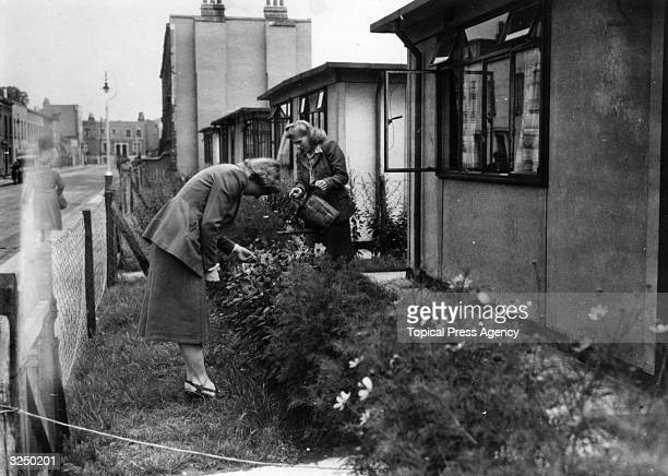 A couple of ladies tending their gardens of prefabricated houses at Camberwell London