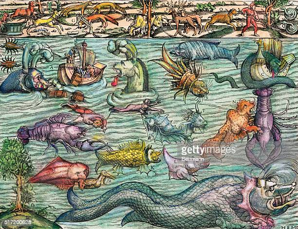 A 16th century illustration of imaginary sea monsters from Cosmographia by Sebastian Munster based on creatures from Carta Marina by Olaus Magnus
