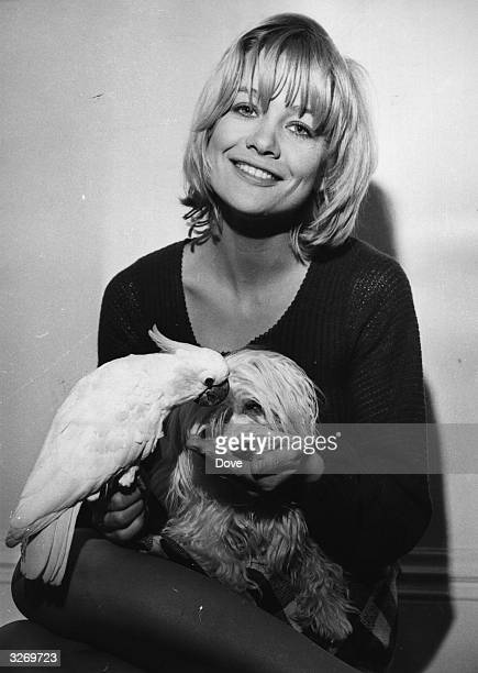Actress Judy Geeson with a parrot and a dog