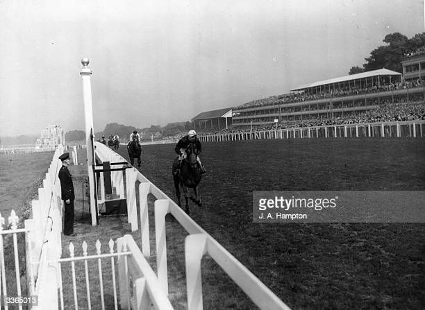 The finish of the 1949 Ascot Gold Cup with Alycidon ridden by Doug Smith winning from Black Tarquin ridden by Edgar Britt