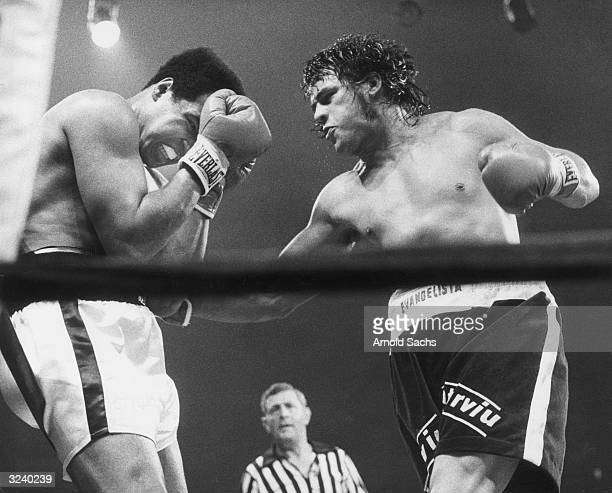 Muhammad Ali takes a punch from Alfreo Evangelista during their 15 round title fight at the Capitol Center in Landover Maryland Ali won the contest...