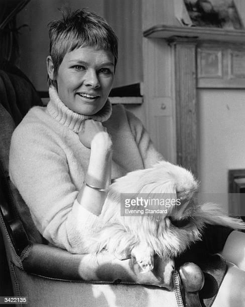 English film and stage actress Judi Dench at home with her pet dog in Hampstead London