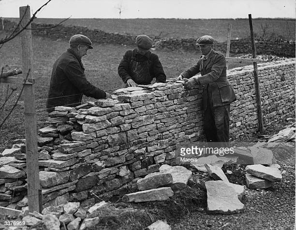 A Uddell C Stanton and A Adams rebuilding dry stone walls near BourtonontheWater in Gloucestershire