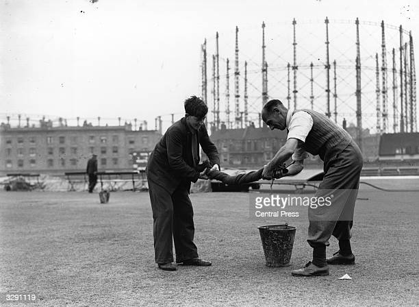 Groundsmen wringing out one of the sacks used to dry the saturated wicket to allow play to continue at the Oval cricket ground London
