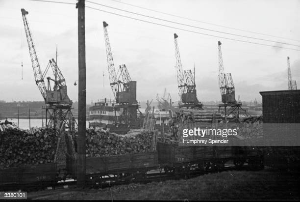 Consignment of scandinavian pit-props loaded on to a train at a Tyneside docks. Original Publication: Picture Post - 38 - Tyneside - pub. 1938