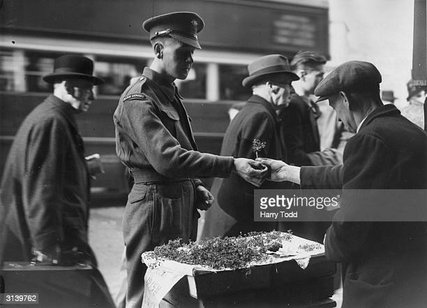 An Irish guardsman buys a sprig of fresh shamrock to wear on the feast day of Saint Patrick