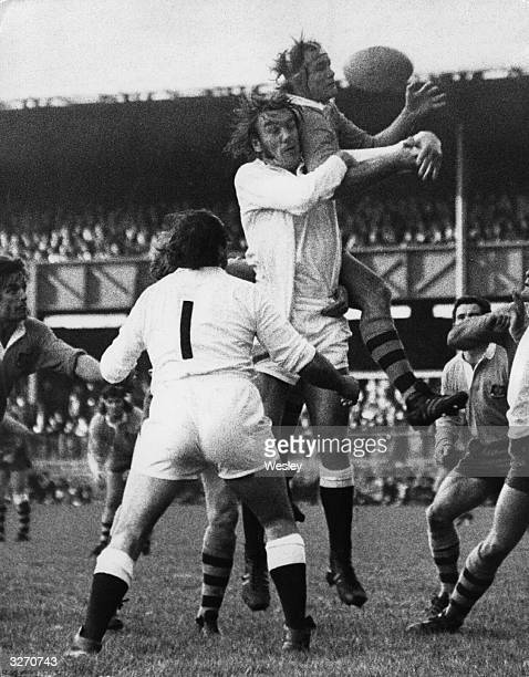 During an international rugby match at Twickenham England player Fran Cotton vies for the ball with G A Shaw of Australia