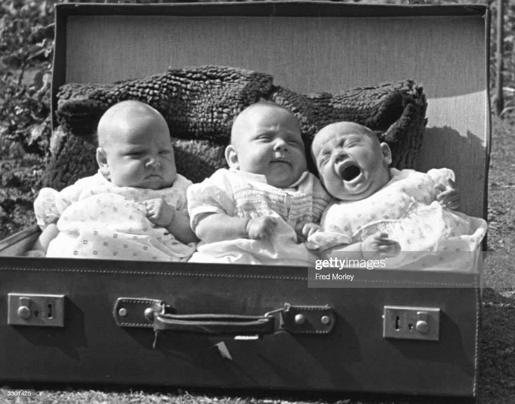 Baby triplets sitting in a suitcase.