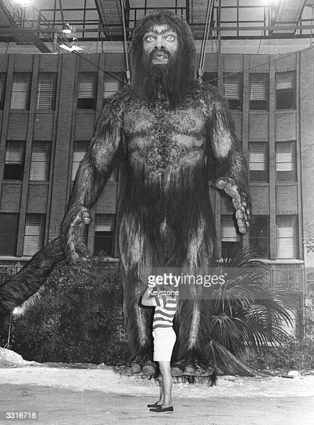 A huge model of the mythical halfman halfbeast creature the yeti in Rome for the shooting of Frank Kramer's film 'Yeti'