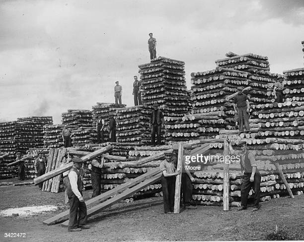Stacking pitprops at Bo'ness in Falkirk Scotland Bo'ness short for Borrowstounness was a thriving fishing port in the 19th century until nearby...