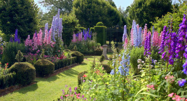 GBR: RHS Virtual Chelsea Flower Show 2020