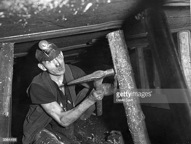 Durham miner putting up a wooden pit prop which are rapidly being replaced with steel props, one of which is on the left.