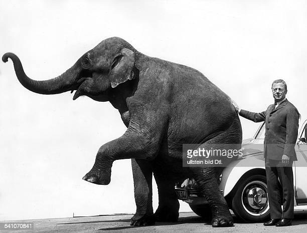Schauspieler, DRollenporträt mit einem Elefanten in 'Die Ente klingelt um halb acht'- 1968