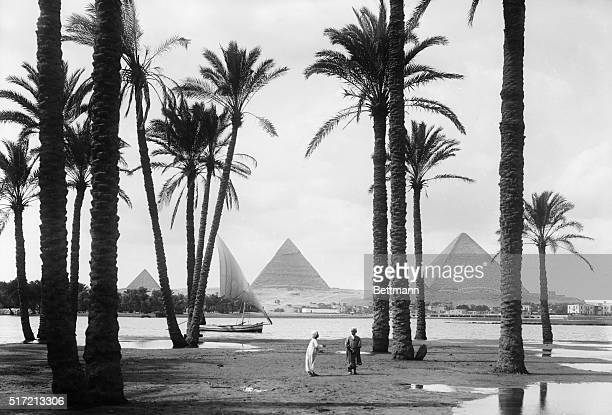 View of the pyramids from the Nile River