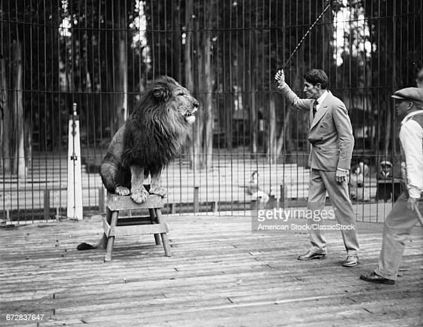 1920s 1930s MAN LION TAMER...