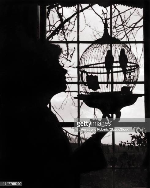 1920s ANONYMOUS SILHOUETTED WOMAN IN PROFILE LOOKING AT TWO BIRDS PARAKEETS IN OLD FASHION ANTIQUE ROUND HANGING BIRDCAGE