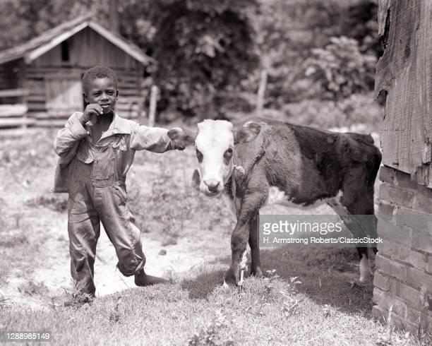 1930s Barefoot African-American Boy Wearing Bib Overalls Holding Calf Both Looking At Camera Rural Farm Barnyard Alabama USA