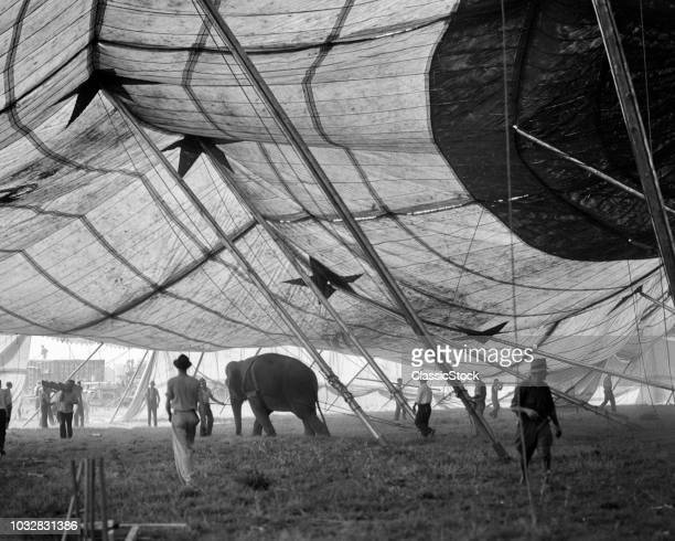 1930s ELEPHANT AND WORKERS...