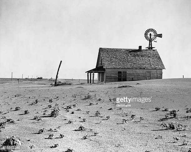 1938Dalhart TX Picture shows the dust bowl an abandoned farm house in Texas