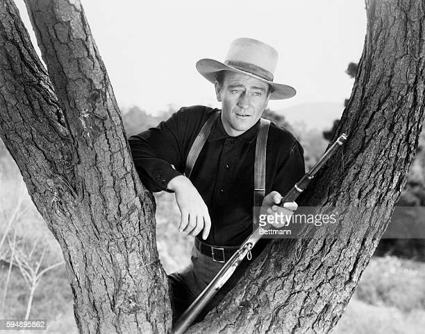 1940John Wayne as he appeared in the film 'Shepherd of the Hills resting his rifle in the fork of a tree Photograph 1940 Movie Still Movie released...