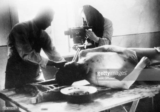 A postmortem examination by Nazi physicians of a Polish victim Germanoccupied Poland circa 1942 A photo from an album documenting German atrocities...