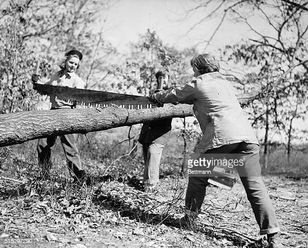 1943Farmingdale Long Island NY It might be hard work to some but to these Lumberjills at the State Agricultural Institute at Farmingdale logging is...