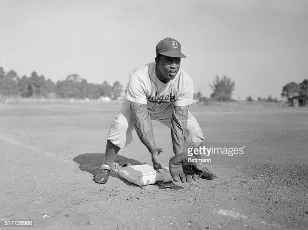 Jackie Robinson during baseball practice. Here J. Robinson shown bending to catch a ground ball.
