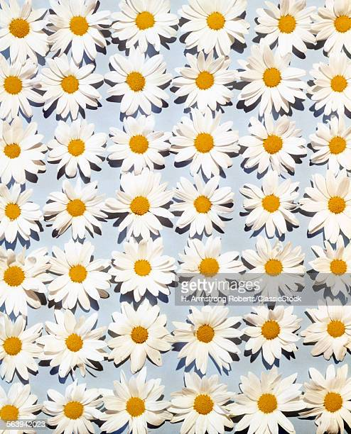 1950s 1960s OVERALL DAISY FLOWER PATTERN ON PALE BLUE BACKGROUND