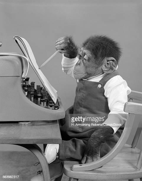 1950s CHIMP IN OVERALLS...