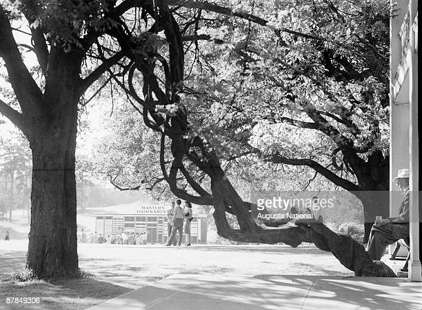 Patrons and the main leaderboard are framed by an oak and wysteria vine during a 1950s Masters Tournament at Augusta National Golf Club in April in...