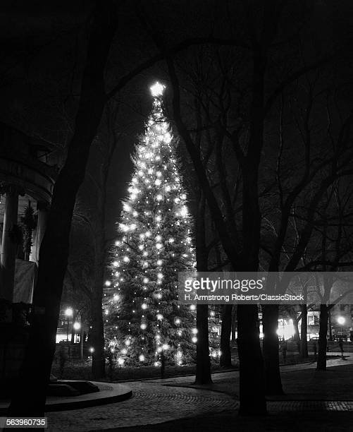 1950s TALL CHRISTMAS TREE...