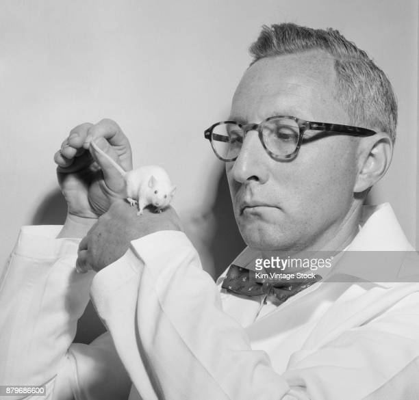 1960s bow tied lab coated scientist is pictured with a white mouse
