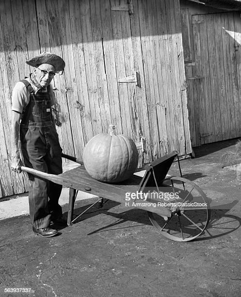 1970s 1980s ELDERLY FARMER...