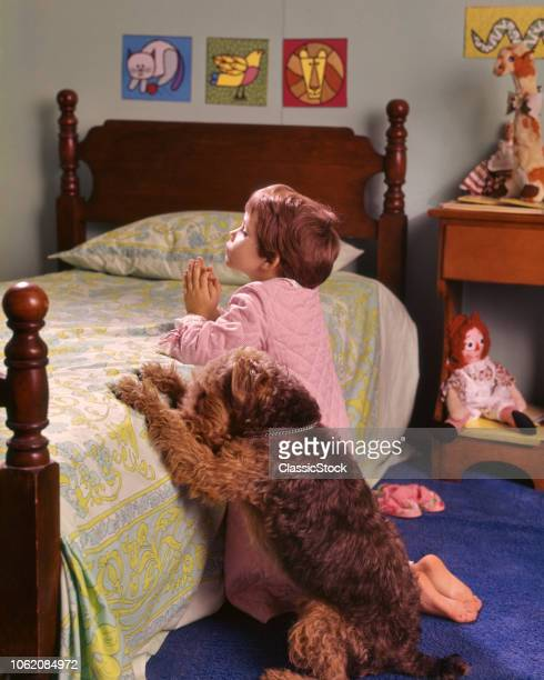 1970s 1980s LITTLE RED HAIR GIRL KNEELING IN BEDROOM BESIDE BED SAYING PRAYERS WITH PET WIRE HAIR TERRIER DOG ALONGSIDE
